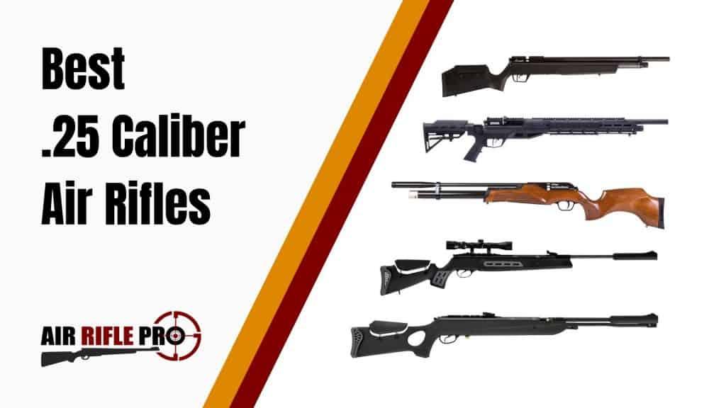 Best  25 Caliber Air Rifles: High Powered & Hard Hitting