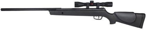 Gamo Big Cat 1250 Air Rifle