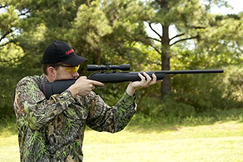 Best Air Rifles For Squirrels, Varmints and Small Game