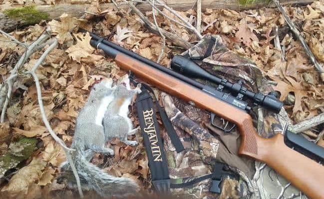 Review of the Benjamin Marauder Wood Stock Air Rifle ( 177