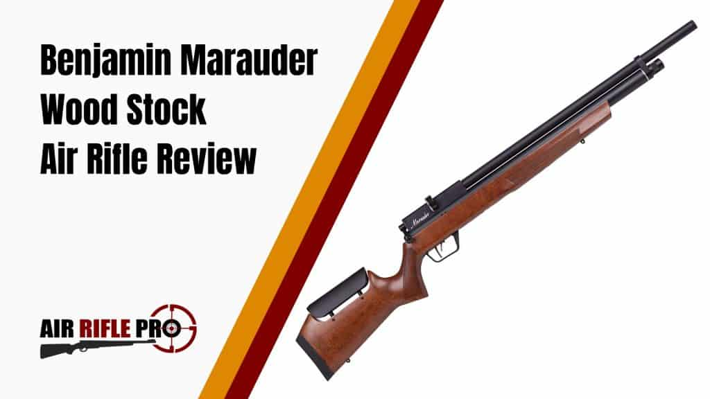 Review of the Benjamin Marauder Wood Stock Air Rifle ( 177