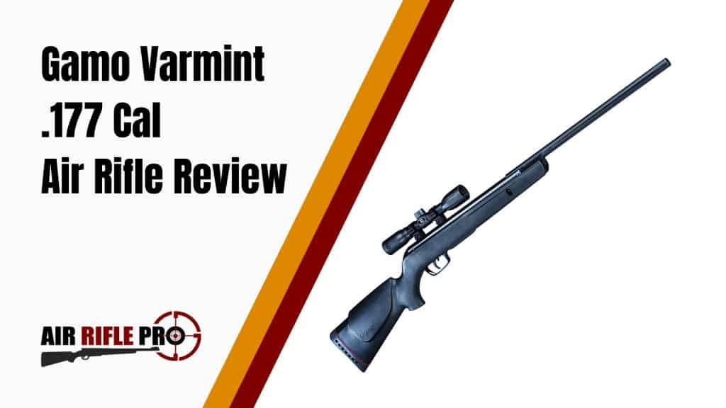 Gamo Varmint .177 Cal Air Rifle Review